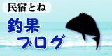 過去の釣果ブログ